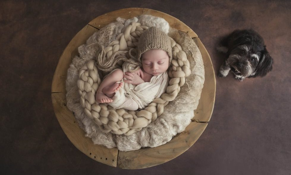 Becoming Newborn Photographer of the Year